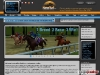 Horse racing game, online virtual stable management - Newturf