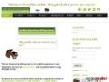 SpyMare Betfair Horse Racing Arbitrage Software